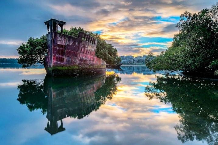 La foresta galleggiante – Australia - meteoweek.com