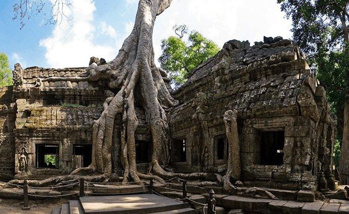 Tempio di Ta Prohm – Cambogia - meteoweek.com