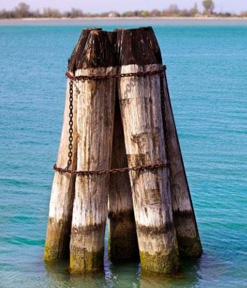 briccola nella Laguna Nord di Venezia - meteoweek.com