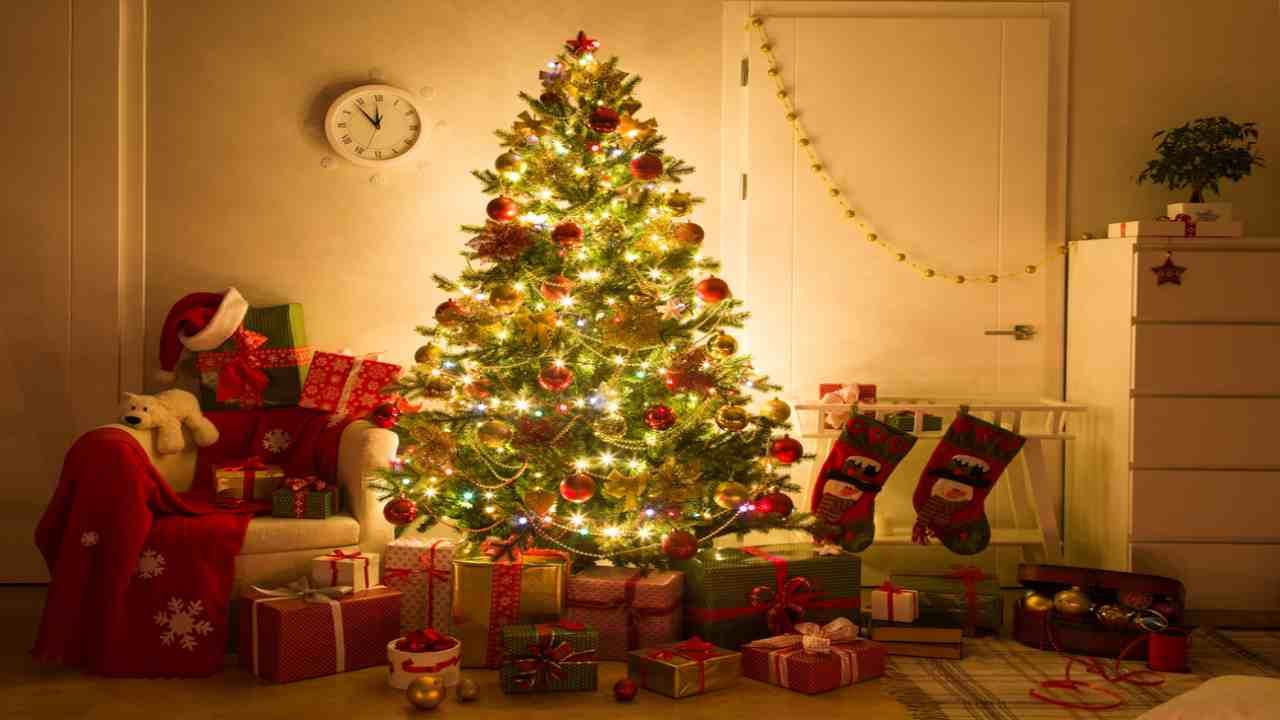 Albero Di Natale Origini.Albero Di Natale Le Origini Dimmi Quando Lo Addobbi E Ti Diro Se Sei Felice