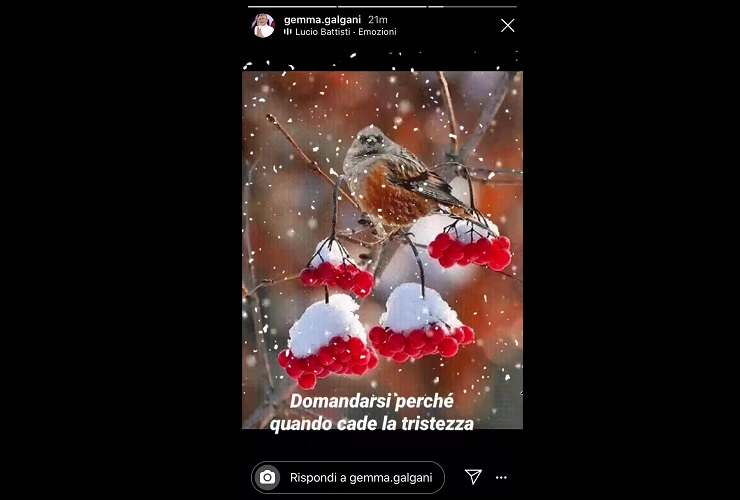 Gemma Galgani boccone amaro per Natale