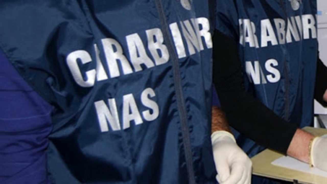 Operazione Ercole: a Reggio Calabria traffico di sostanze do