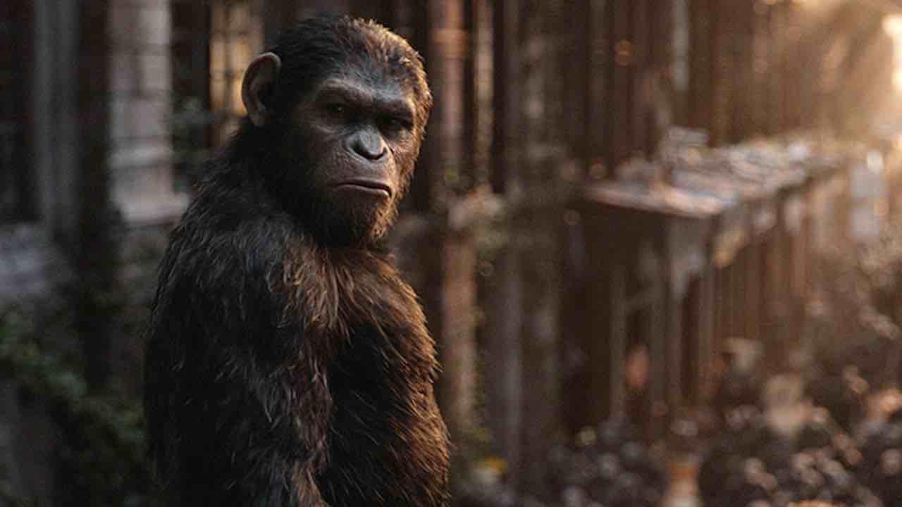 Il Pianeta delle Scimmie | il nuovo film della saga non sarà