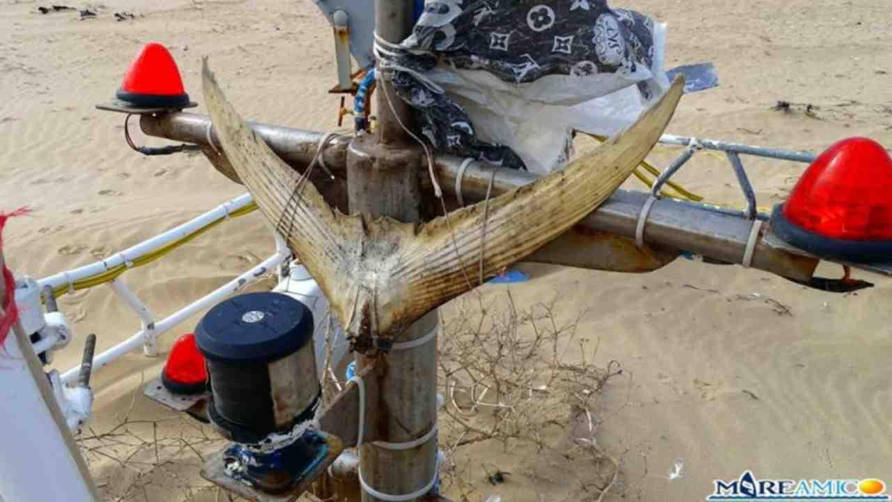 Resti di un peschereccio su una spiaggia siciliana: emergono i primi dubbi