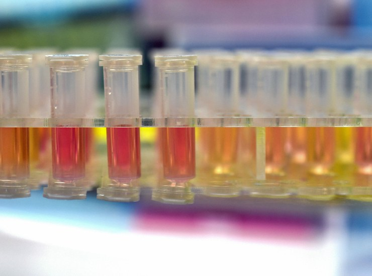 Coronavirus, ecco perché Avigan non è panacea per morbo(GettyImages)
