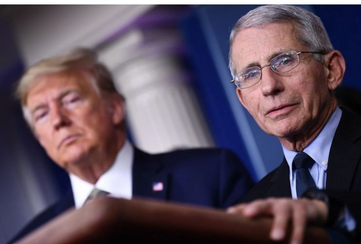 anthony fauci - trump