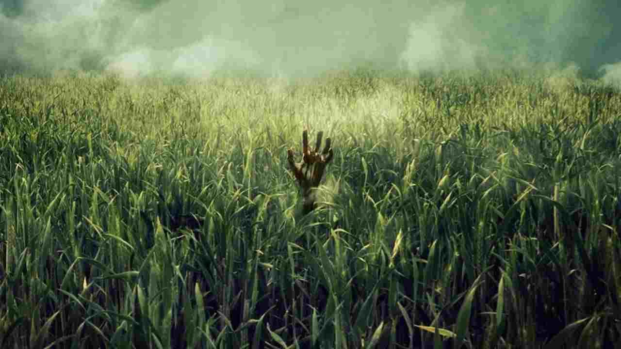 #ioresto a casa | Netflix | Nell'erba alta, attenzione a non restare ...