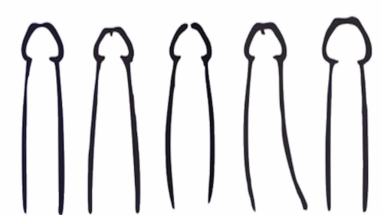 Conosci le forme del pene?