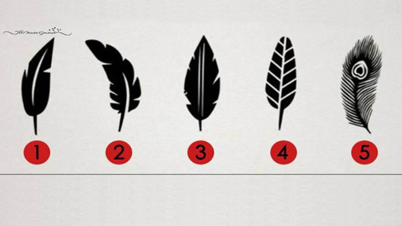 Test psicologico della piuma: scopri come appari all'esterno