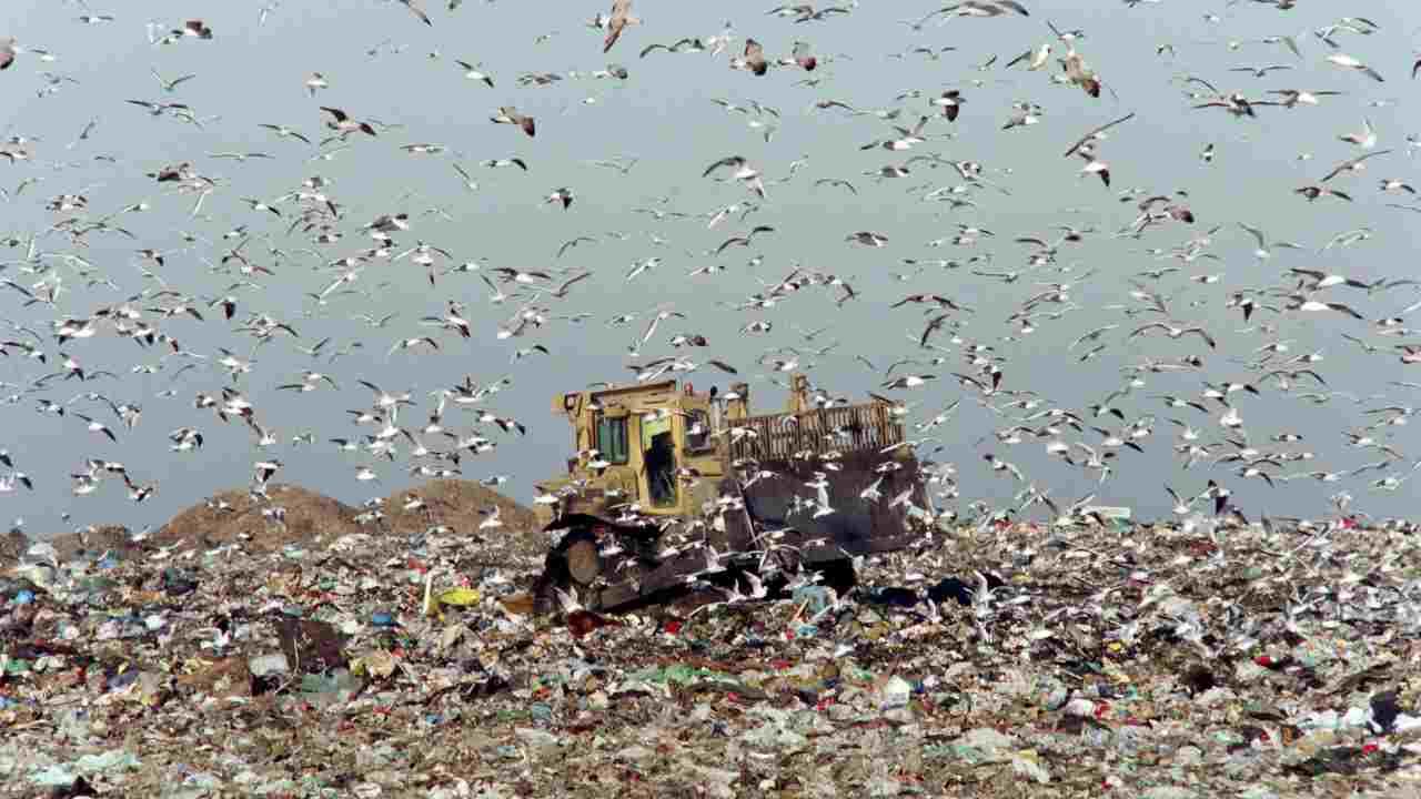 Sicilia, traffico illecito rifiuti: in manette anche il re d