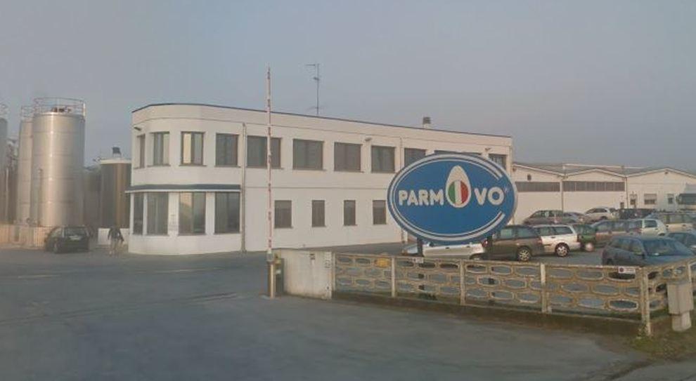 Focolaio azienda provincia di Parma