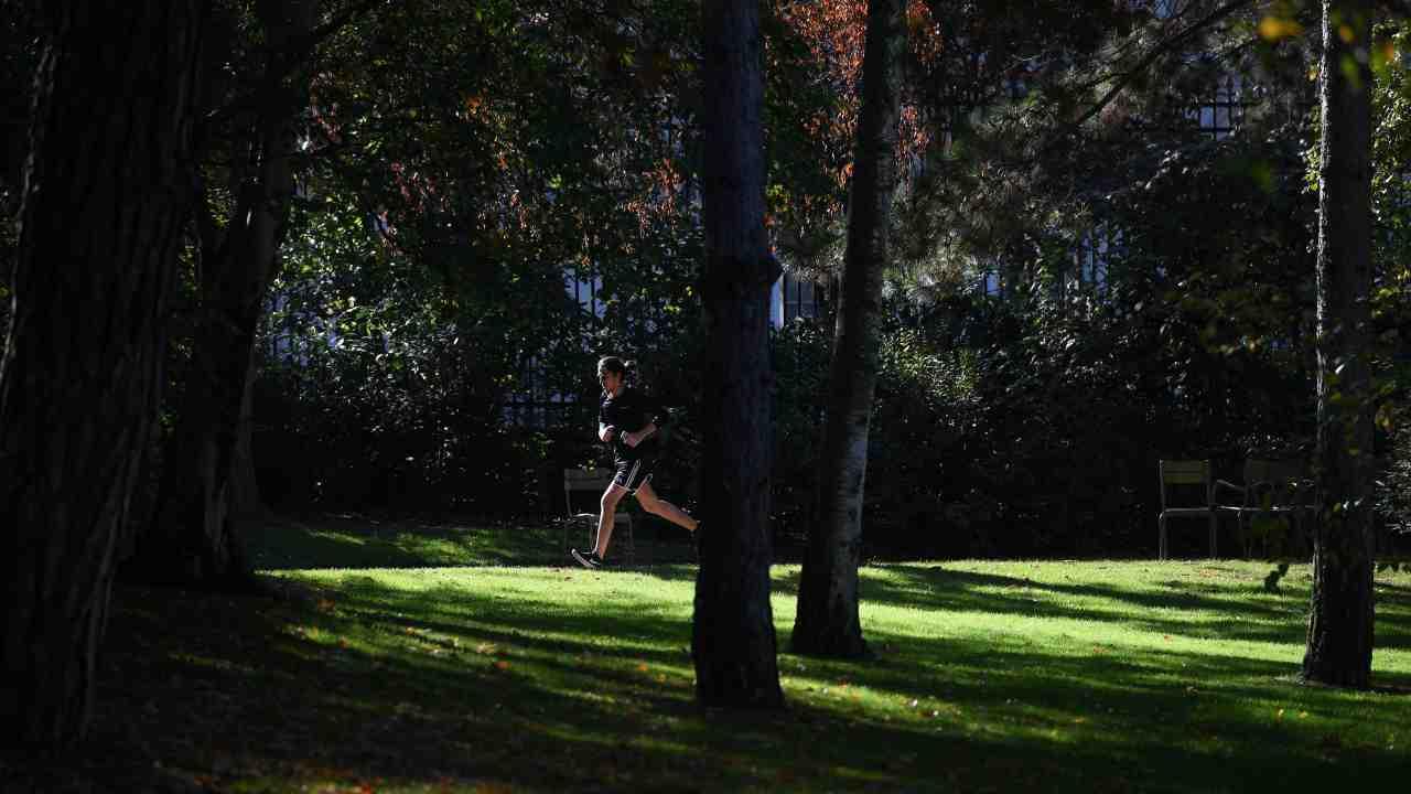 Donna azzannata in Salento mentre faceva jogging: colpa di u