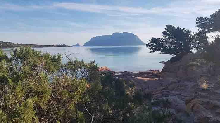 Luca Palamara prestanome lido in Sardegna