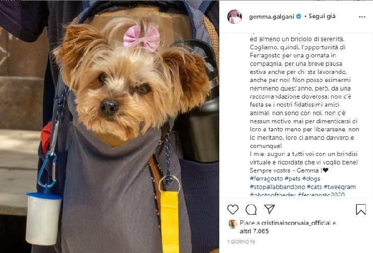 Gemma Galgani soffre la solitudine