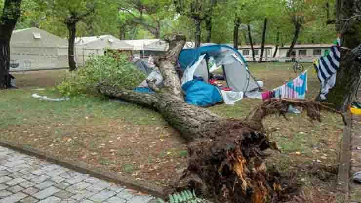 albero sradicato dal mal tempo crolla e uccide due sorelle in campeggio una era una promessa del judo