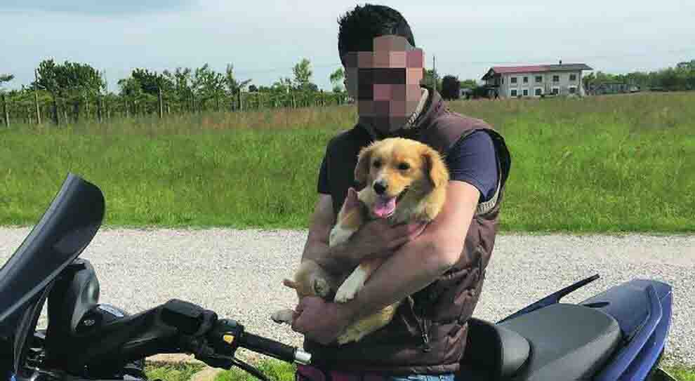 Fontaniva Padova gli ritirano la patente e si spara con il fucile, muore a 38 anni
