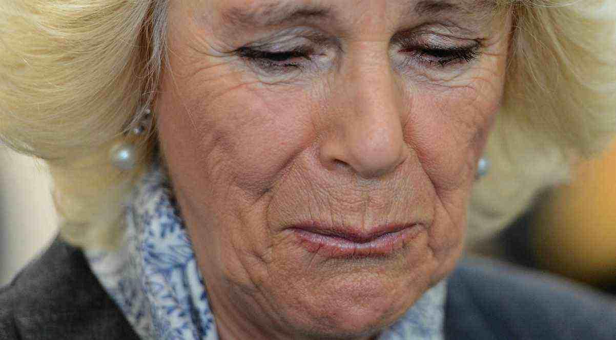 Camilla Parker Bowles e la sua dipendenza - meteoweek