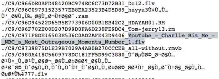 Osama Bin Laden e i video porno, ritrovati nel bunker in cui venne ucciso filmati a luci rosse