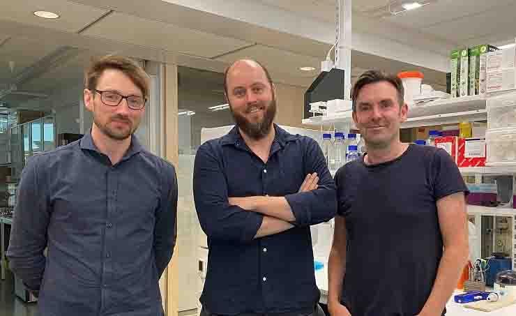 Il team del Dipartimento di Microbiologia, Oncologia e Biologia cellulare del Karolinska Institutet: (da sinistra)  Leo Hanke, Ben Murrell and Gerald McInerney