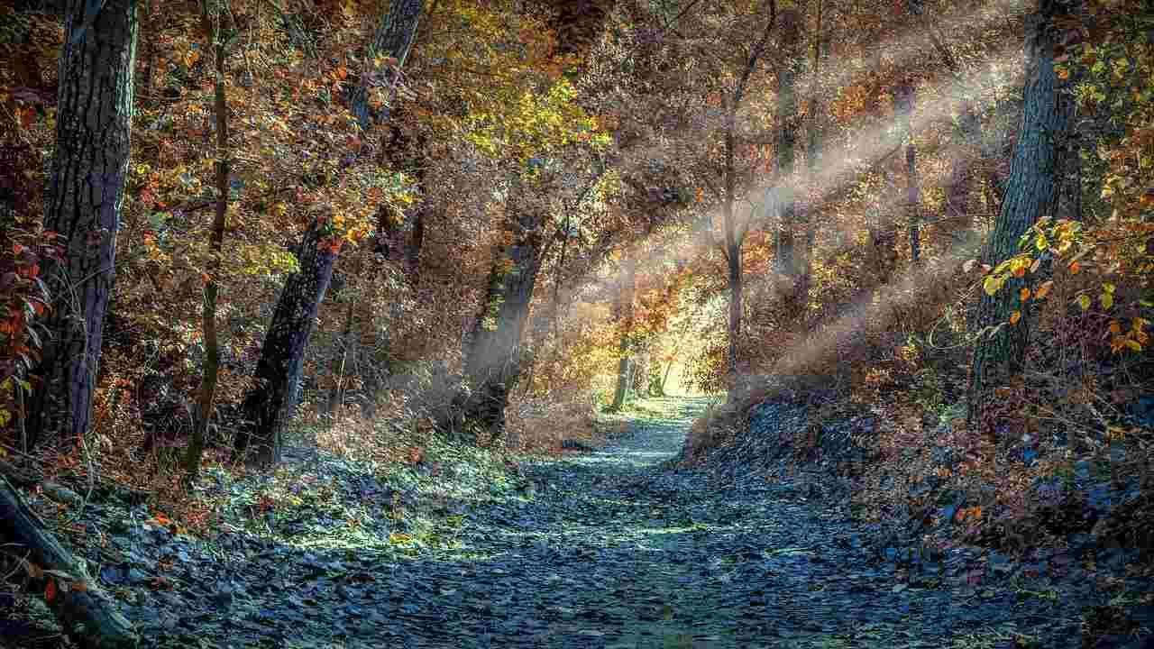 strada che porta a Dio perdono