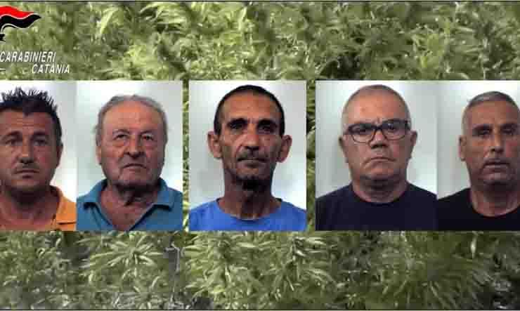 sequestrati 1300 kg di marijuana
