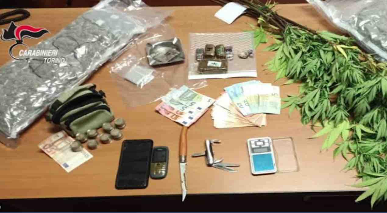 Torino, 7 arresti per detenzione e spaccio di marijuana. Facevano parte di una banda.