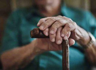 17enne coltiva la marijuana, la nonna lo denuncia ai Carabinieri