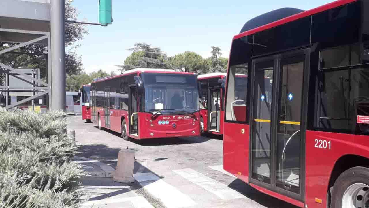 Bozza Dpcm, Trasporto pubblico locale