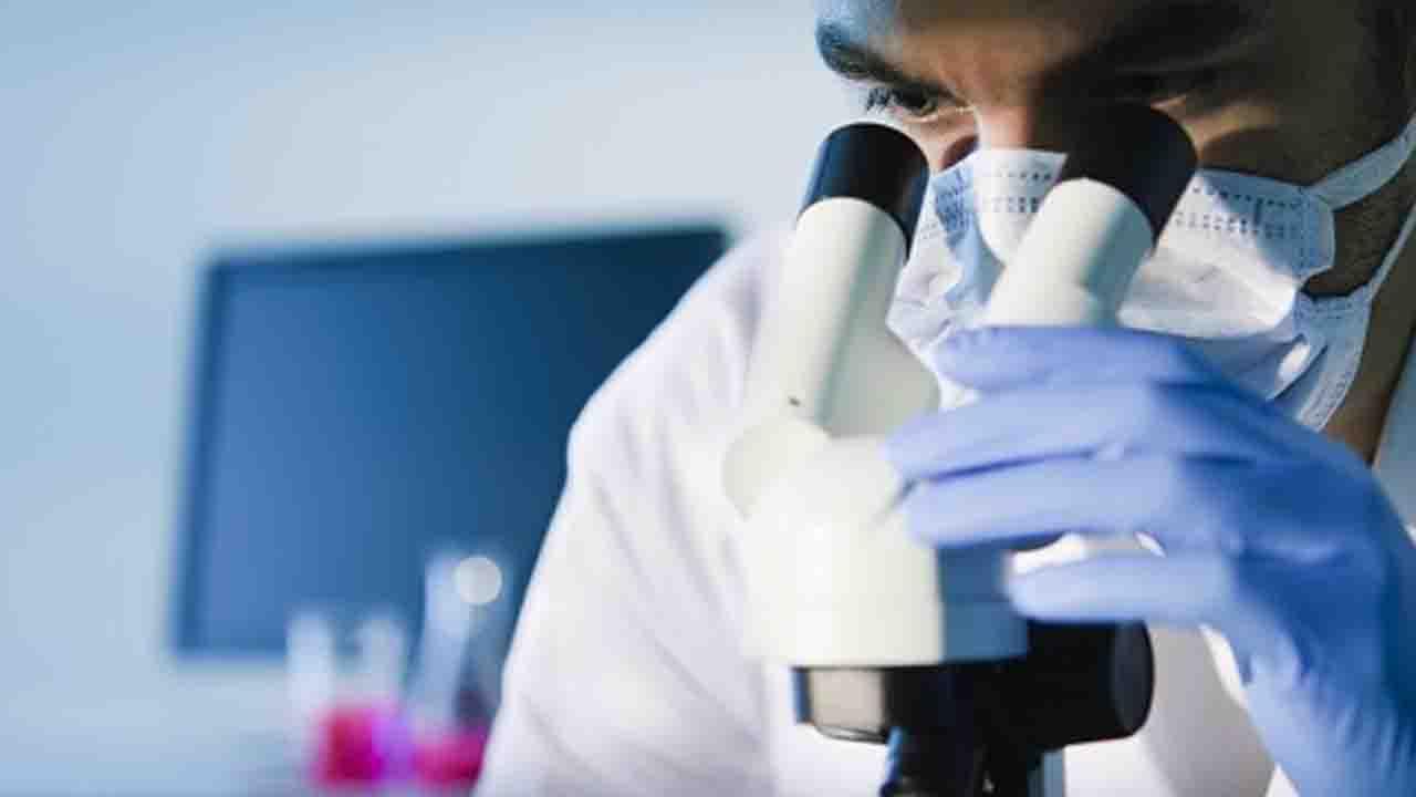 La ricerca dello Spallanzani: differenze COVID e HIV