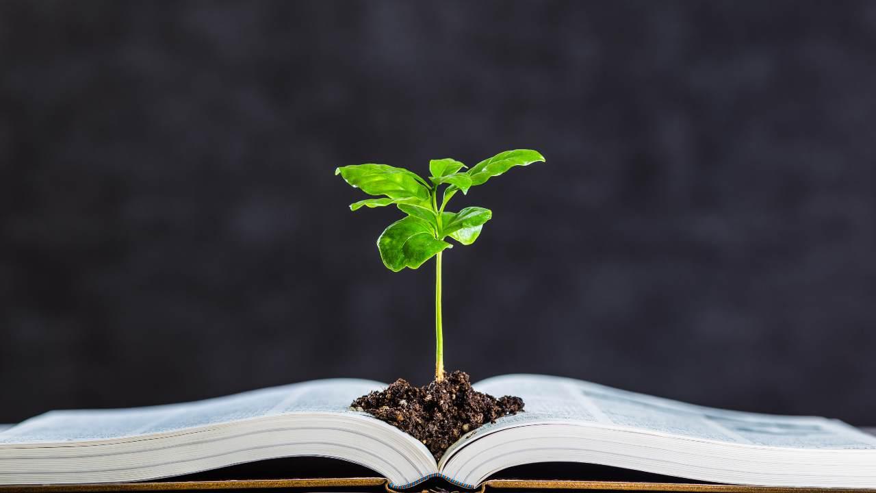 La parola di Dio è salvezza e vita eterna