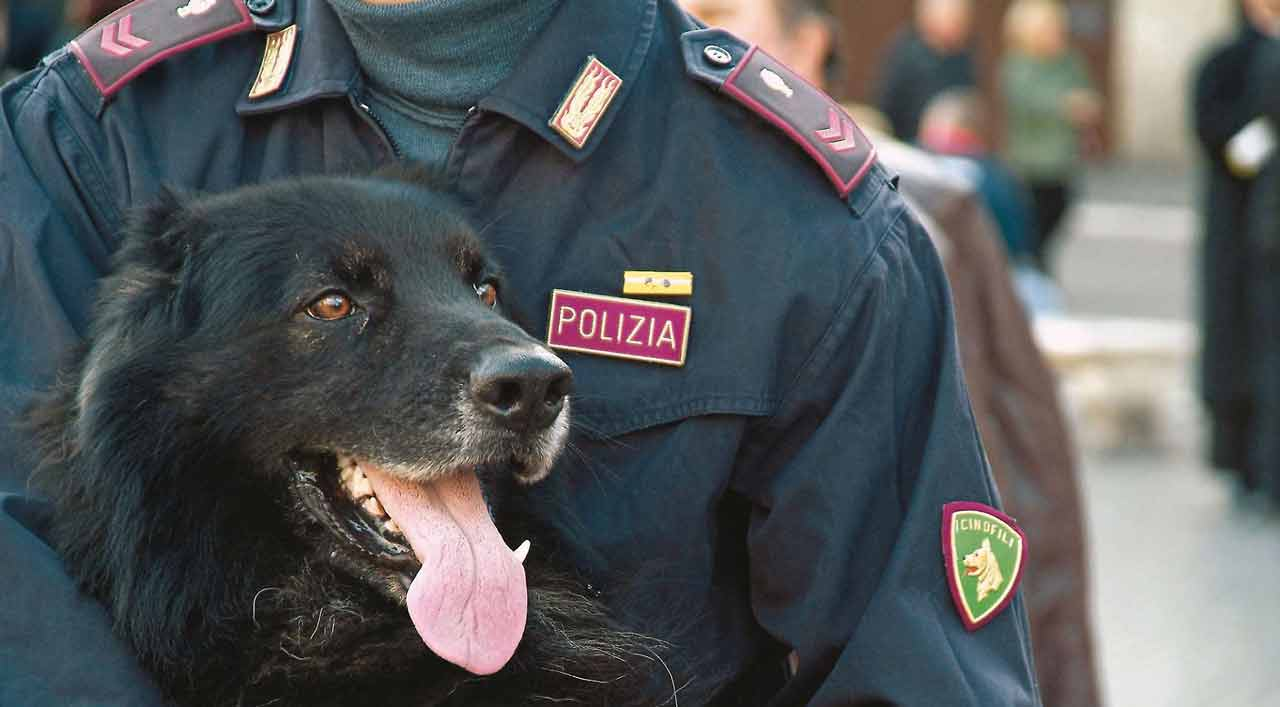 Droga a Roma: in 7 giorni arrestati 15 pusher e sequestrati oltre 3mila euro