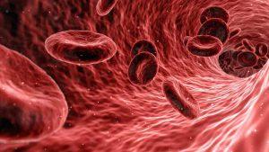 Covid, lo studio sul plasma: dato subito, riduce il rischio di malattia grave