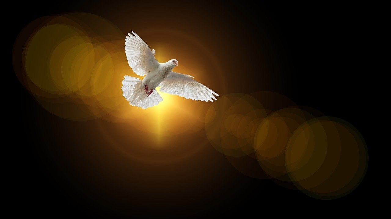 Colomba Spirito Santo