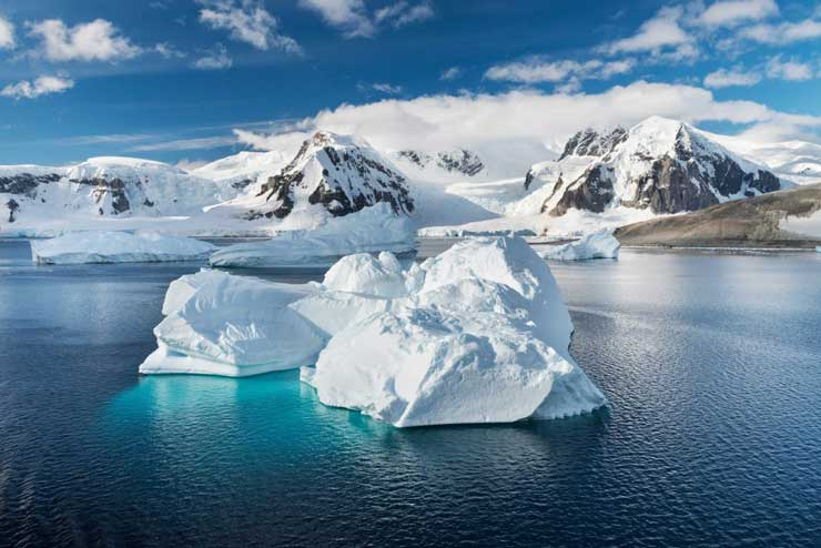 Identificate 269 nuove specie di batteri in Antartide