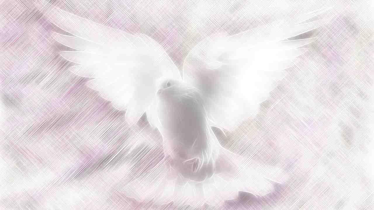 Colomba Santo Spirito azione silenziosa di Dio