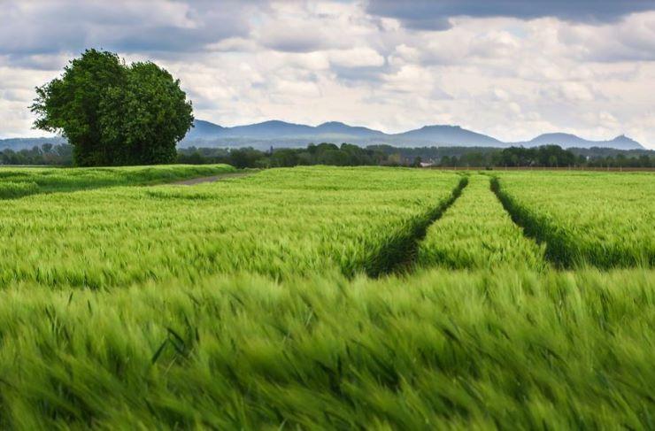 Agricoltore sposta il confine Francia-Belgio: rischio incidente diplomatico - www.meteoweek.com