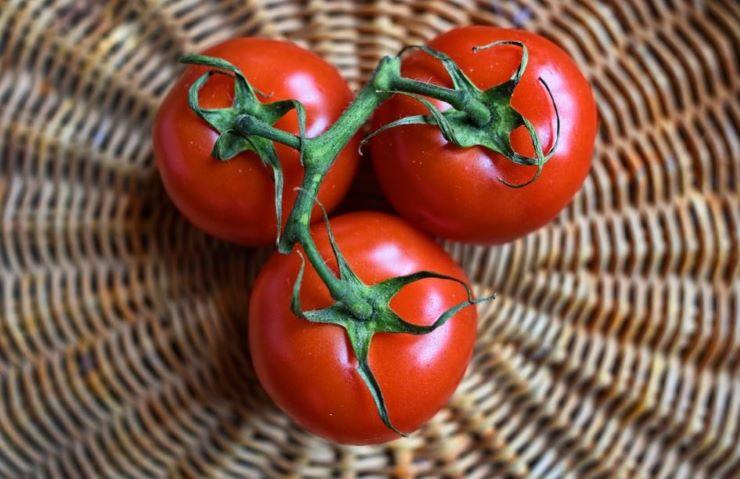 Passata di pomodoro falsa, sequestrate quasi 4 mila tonnellate di conserve - www.meteoweek.com